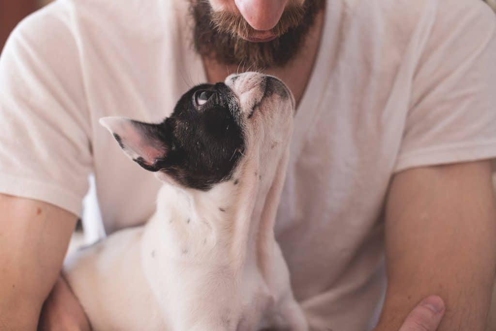 Audioknihy pro šťastné psy