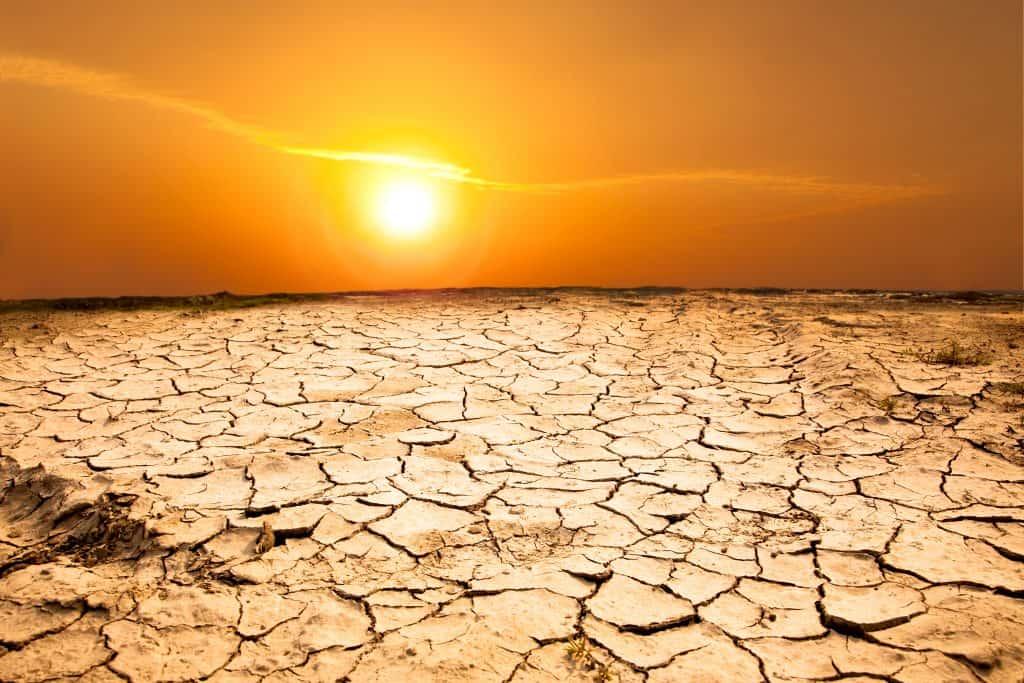 Klimatická zmena. Ako môžeme zabrániť ďalšej globálnej kríze?