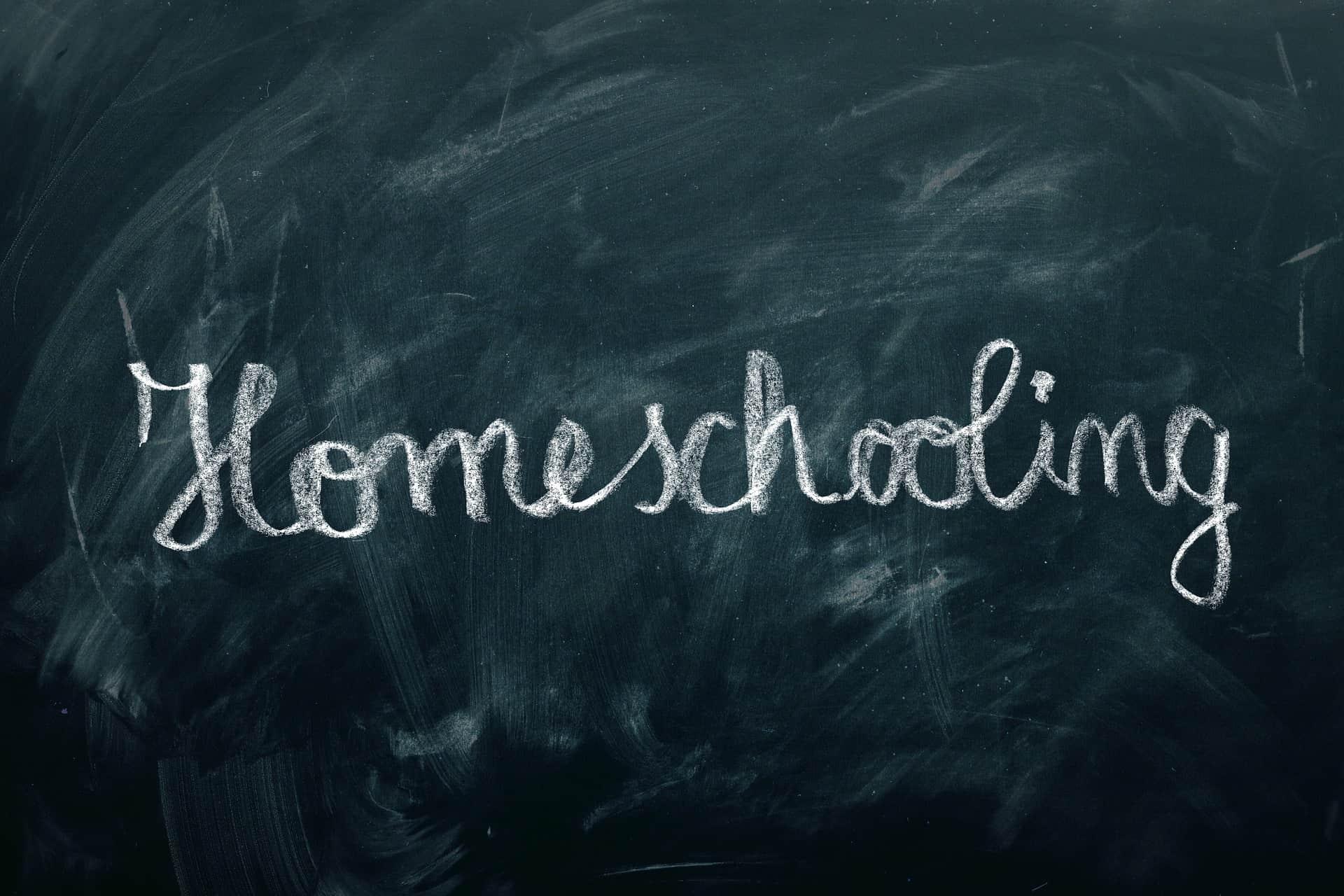 Domáce vzdelávanie – strašiak alebo ozajstná pomoc?
